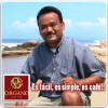 RED INERCIAL ORGANO GOLD