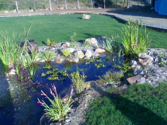 Cascadas y estanques for Cascadas de estanques