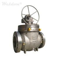 Stainless Steel Top Entry Ball Valve, A351 CF8M, 24 Inch, 900 LB