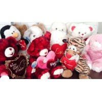 Tony Collection - Todo Peluche