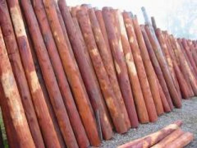 Postes de quebracho e itin varillas tablas de madera dura - Postes de madera ...